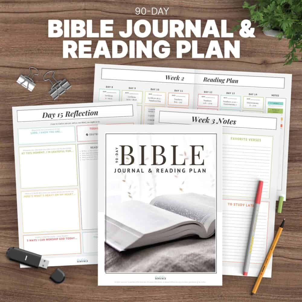 Bible In 90 Days Journal